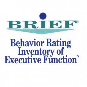 BRIEF PTech אבחון בריף